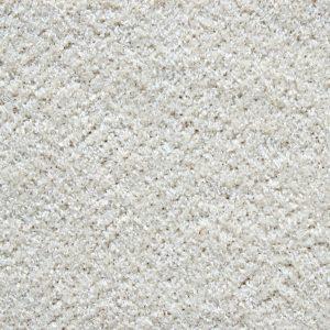 carpet cleaning services san jose california